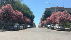Cars move along the flower alley in Rome Stock Footage