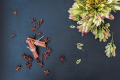 cinnamon, star anise and maple seeds - stock photo