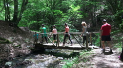 Group of friends hiking, walking in forest path together Stock Footage