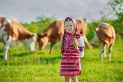 girl tending cows - stock photo