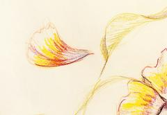 Color drawing flower. Original hand draw on paper - stock illustration