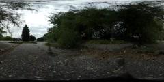360Vr Video People Walking by Park Alley Dusk Spherical Panorama Dry Leaves Stock Footage
