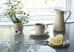 Daisies and cup of tea on glass table background window Stock Photos