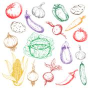Sketched wholesome fresh vegetables icons Stock Illustration