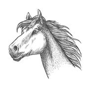 Galloping horse of andalusian breed sketch symbol - stock illustration