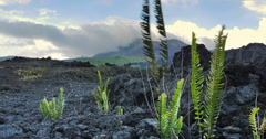 Deserted volcanic terrain panorama view. Extreme places and sites - stock footage
