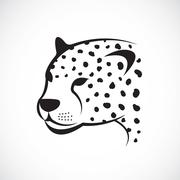 Vector image of an cheetah face on white background. Vector cheetah face for - stock illustration