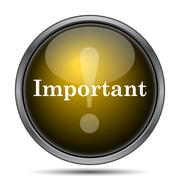 Important icon. Internet button on white background.. Stock Illustration