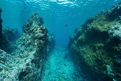 Underwater landscape outer reef Pacific ocean Stock Photos