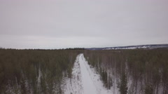 Aerial view above a snowy road between pine trees - Sweden Stock Footage