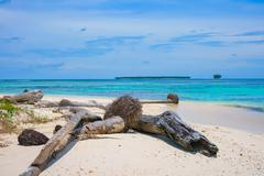 Uninhabited remote tropical islands Stock Photos