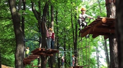 Kids rope park. Adventure activity in forest. Climbing on trees, outdoor kids - stock footage
