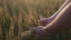 Male farmer hands touching ears Stock Footage