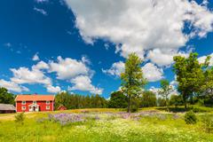 Typical swedish farmhouse in spring - stock photo