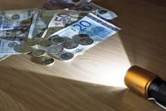 Money in the light beam of the electric torch. Stock Photos