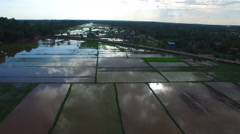 Wide aerial view of semi submerged rice paddies during monsoon. Stock Footage