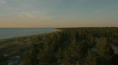 Aerial Shot of Coastal Forest, Beach and Sea in Sunset Light. Stock Footage