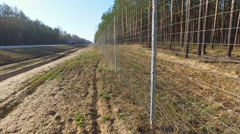 Protective mesh on the side of the road from wild animals Stock Footage