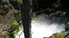 Raging Water Fall Through Coastal Forest Stock Footage
