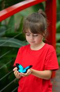Little girl holds a Ulysses Swallowtail Stock Photos