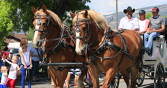 4th July Parade horse and carriage DCI 4K Stock Footage