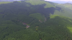 Flying over the forest in a wonderful sunny summer day Stock Footage