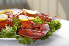 A plate with green salad and lobster Stock Photos
