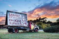 Truck Signage - stock photo