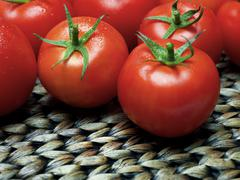 Tomatoes on thatch Stock Photos