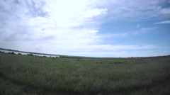 Car driving through grassland at Cherry Creek State Park.-POV point of view. Stock Footage