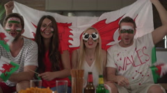 Four soccer fans cheering for Wales Stock Footage