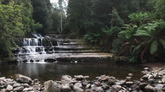 slow zoom in shot of liffey falls in tasmania - stock footage