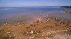 Rocks on the seashore of Lahemma National Park Stock Footage