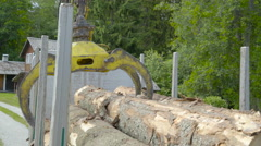 A log grapple getting logs on the truck Stock Footage