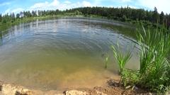 Kid girl having fun, swim in lake, сaucasian man crawl Stock Footage