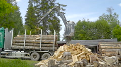 A forest harvester truck transferring logs Stock Footage