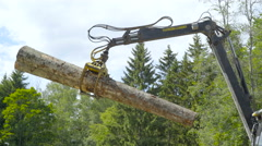 A log grapple forest harvester carrying two logs Stock Footage