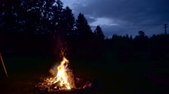 The fire coming from the firewoods Stock Footage