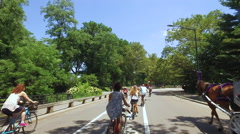 Bicycle ride fast timelapse in New York City Central Park Stock Footage