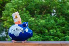 A piggy bank on a plank in front of a green tree Stock Photos