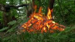 People Walk Around Fire and White Coals Bonfire Burning Among Green Grass Stock Footage