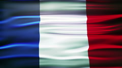 Flag of France. French official flag gently waving in the wind Stock Footage