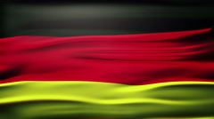 national flag of Germany named 'Bundesflagge und Handelsflagge', waving and - stock footage
