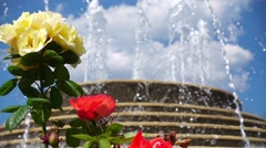 Fountain and Beautiful Roses Stock Footage