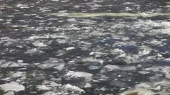 River Ice Stock Footage