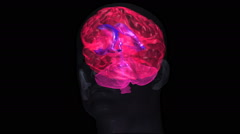 Three-dimensional animations showing the human brain and its ventricles - stock footage