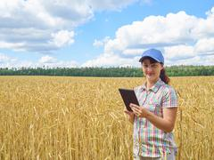 Young pretty farmer girl standing in yellow wheat field - stock photo