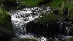 Flowing creek in slow motion Stock Footage