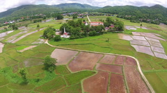 Aerial shot rice field with temple view Stock Footage