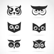 Vector image of an owl face design on white background. Vector owl face for y Stock Illustration